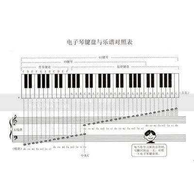 儿童电子琴大教本(上下册)(2010最新版)(含光盘)