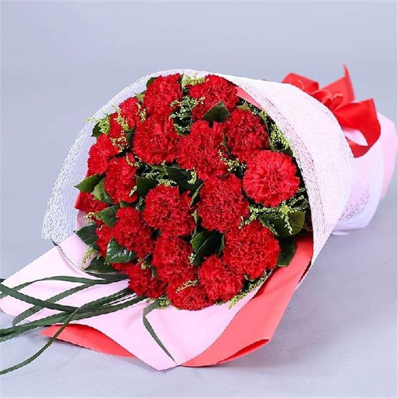 鲜花速递 19朵红康乃馨精美花束