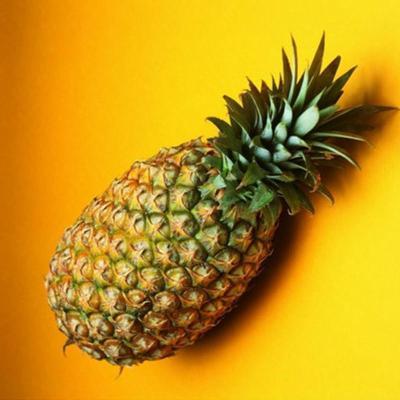 安鲜优选 台湾特产 凤梨 无眼菠萝 大菠萝 一个
