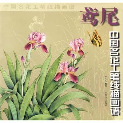 鸢尾 中国名花工笔线描图谱