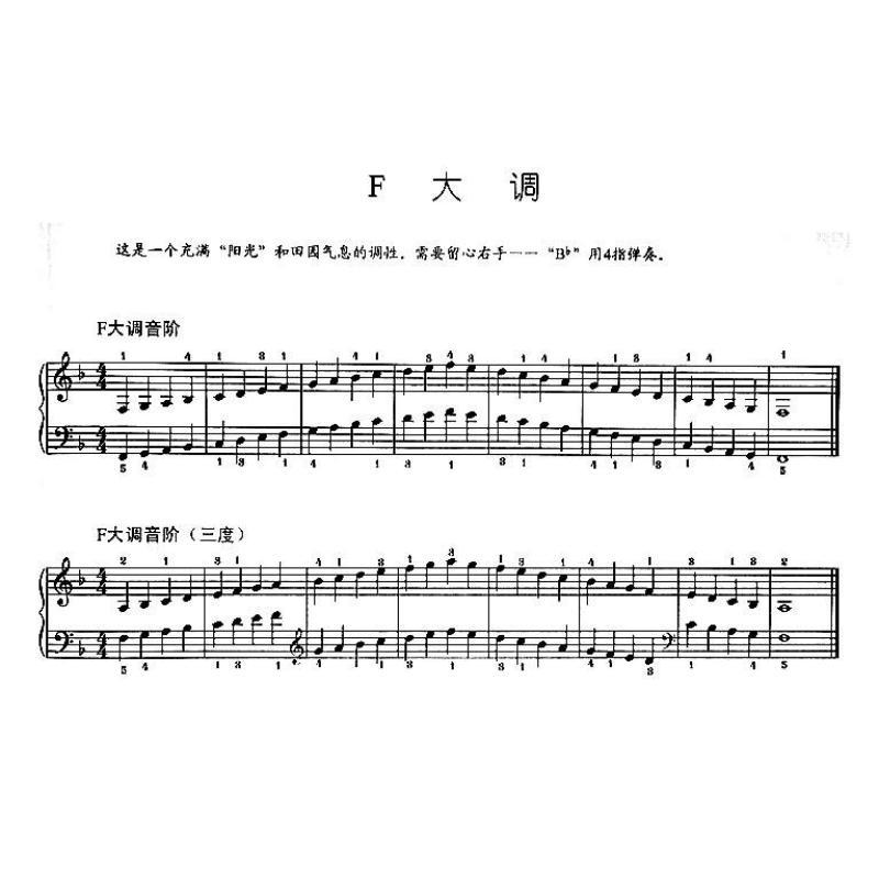 钢琴音阶.和弦与琶音(大音符版)