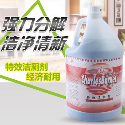 王室(WANGSHI)潔廁液清香型大桶 2瓶裝 3.8L/瓶 酒店潔廁靈馬桶清潔劑強力潔廁液清香型大桶