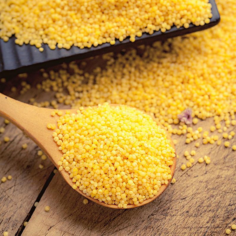 方家铺子 东北特产 有机黄小米五谷杂粮 色泽均匀 500g/袋图片