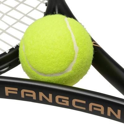 FANGCAN 網球 高級訓練球 練習球耐磨 初學者入門 無標 網球場 網球特價專用毛料 進口橡膠 1只