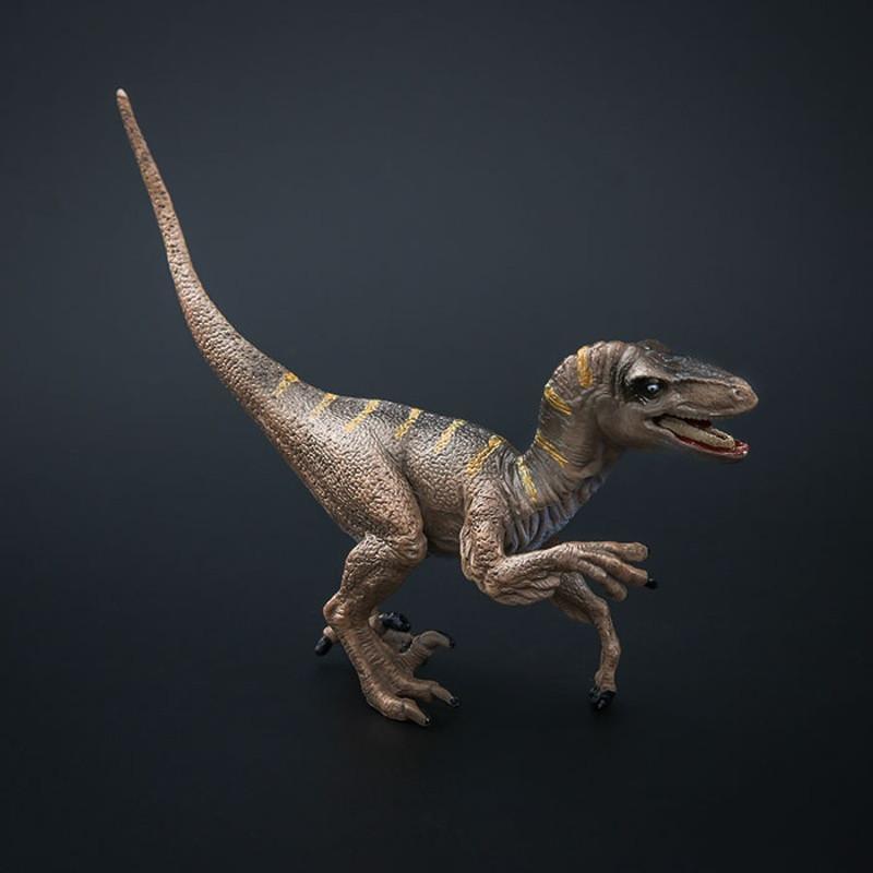 恐龙发型儿童男孩分享展示