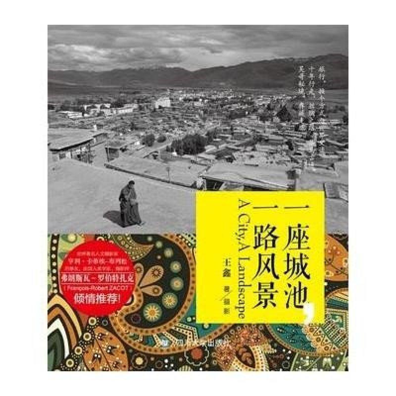 《一座城池,一路风景》王鑫【摘要 书评 在线阅读】