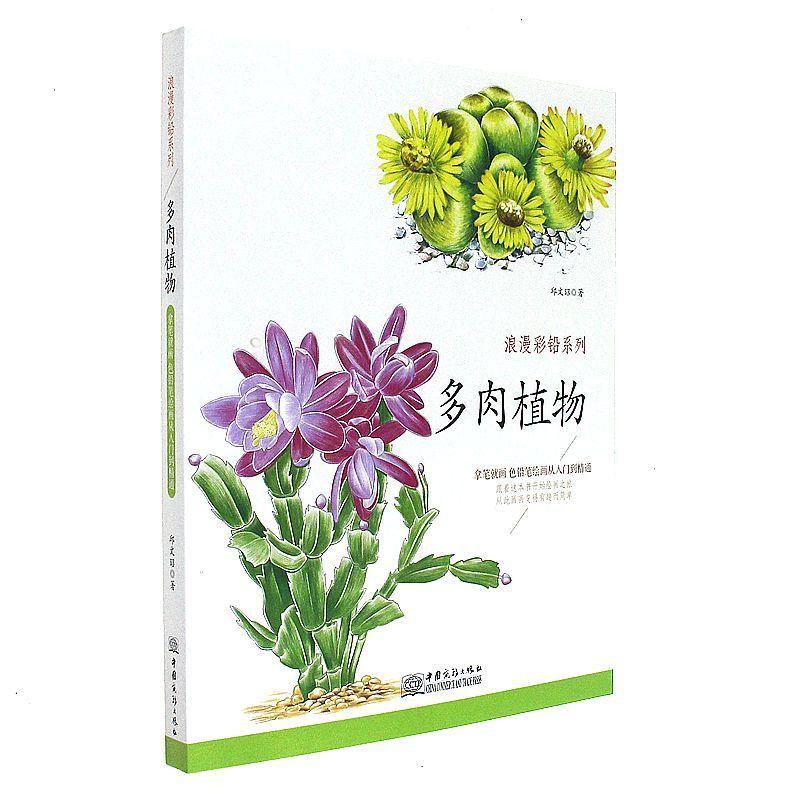 《浪漫彩铅系列多肉植物篇 各种植物素描彩铅画色铅笔