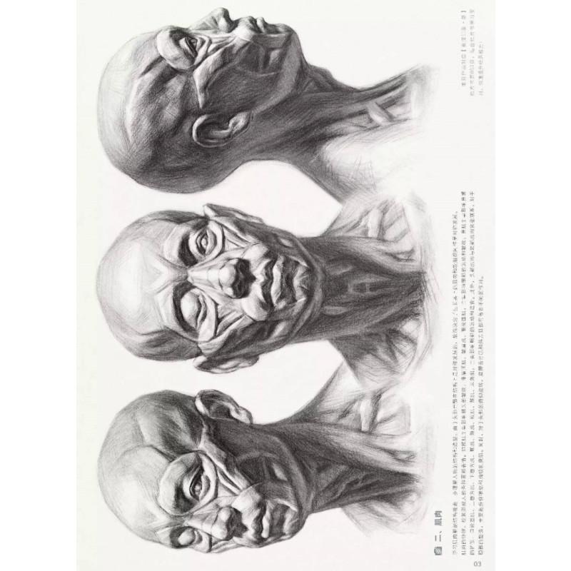曹亮著 重庆出版社 人物素描头像美术教程教材 画法步骤解析 半身像头