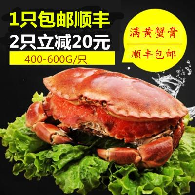 金御丰海鲜 熟冻面包蟹 黄金蟹约400-600g黄金蟹 海螃蟹 熟冻面包蟹 膏蟹