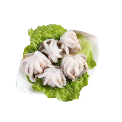 金御豐海鮮 冷凍八爪魚(小章魚)1000g 1袋 袋裝