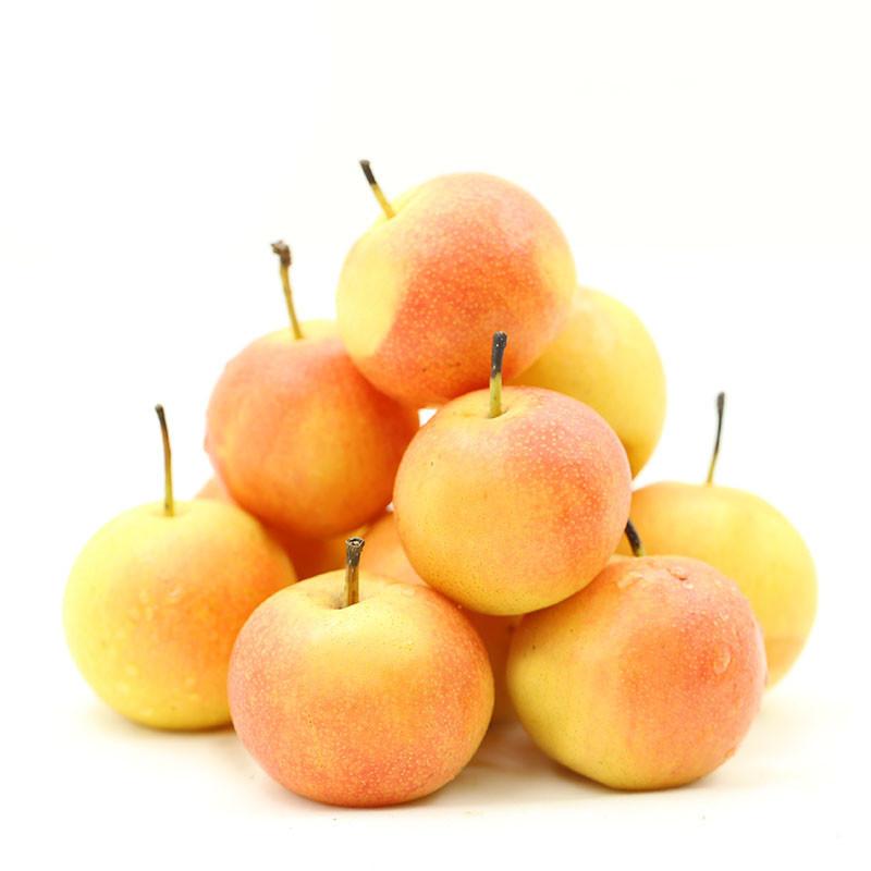 南果梨新鲜南国梨辽宁梨鞍山特产梨子5斤海城秋子梨水果