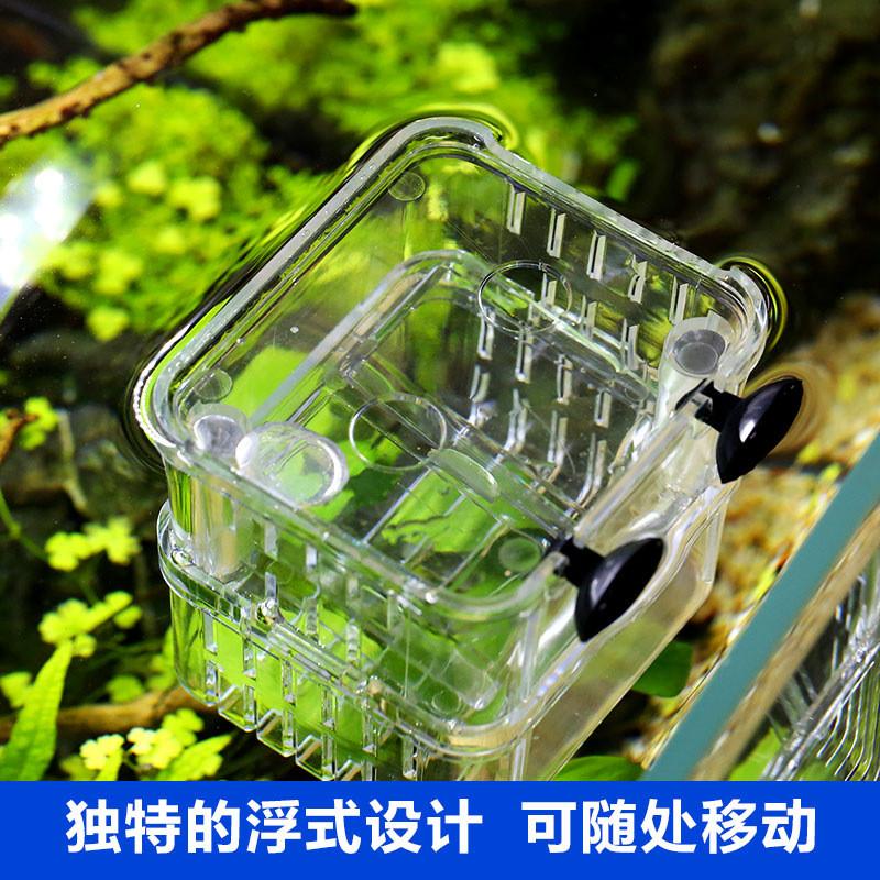 森森孔雀鱼繁殖盒幼鱼鱼缸隔离斗鱼鱼苗产卵器热带鱼亚克力孵化盒图片