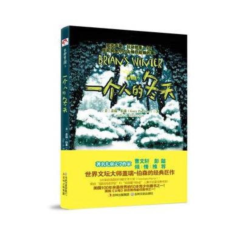 《手斧男孩3:一个人的冬天》[美]盖瑞·伯森【摘要