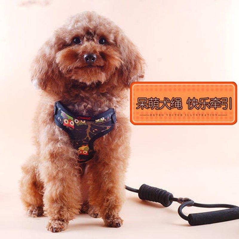 (胸背衣 牵引 )可爱狗狗牵引绳宠物胸背带泰迪贵宾博美狗链子小型犬狗