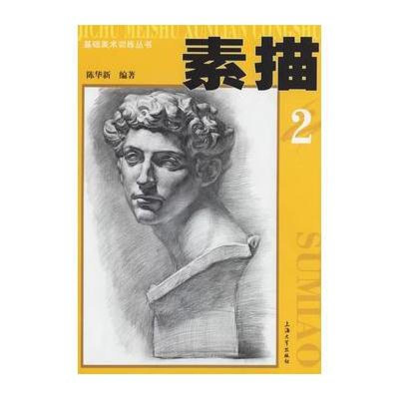 正版书籍 素描2——基础美术训练丛书 9787810589574 陈华新