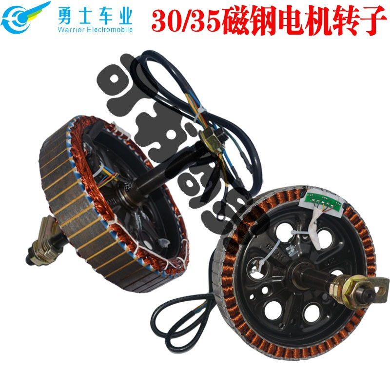 可书电动车电摩10寸电机转子定子线圈30/35磁钢48v60v