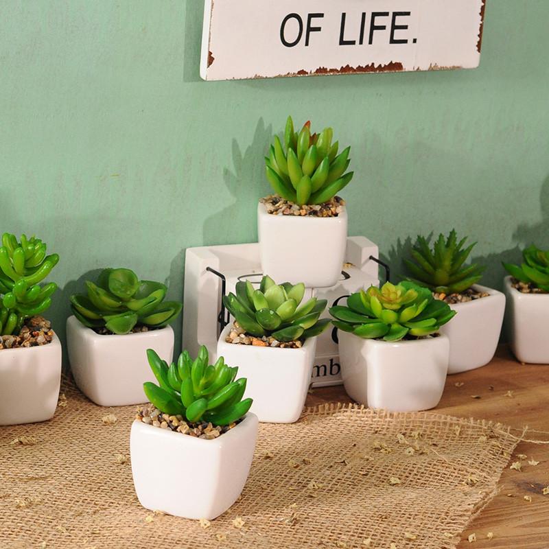 家居客厅室内假花多肉摆设植物花卉仿真花装饰品盆栽摆件室内摆饰