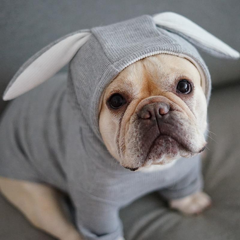 狗狗宠物法斗衣服柯基巴哥泰迪中型犬服饰兔耳朵可爱卡通秋冬装