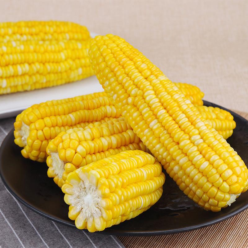 水果玉米_水果玉米 2.5kg 新鲜蔬菜