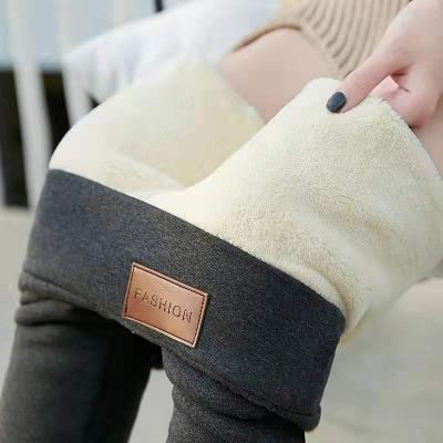 追记 新款秋冬加绒加厚打底裤外穿修身显瘦小脚裤子女